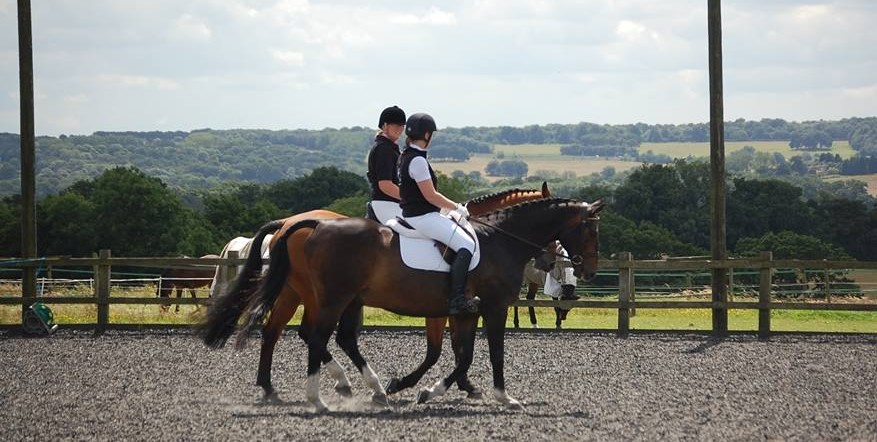 Equestrian Events at Harold's Park