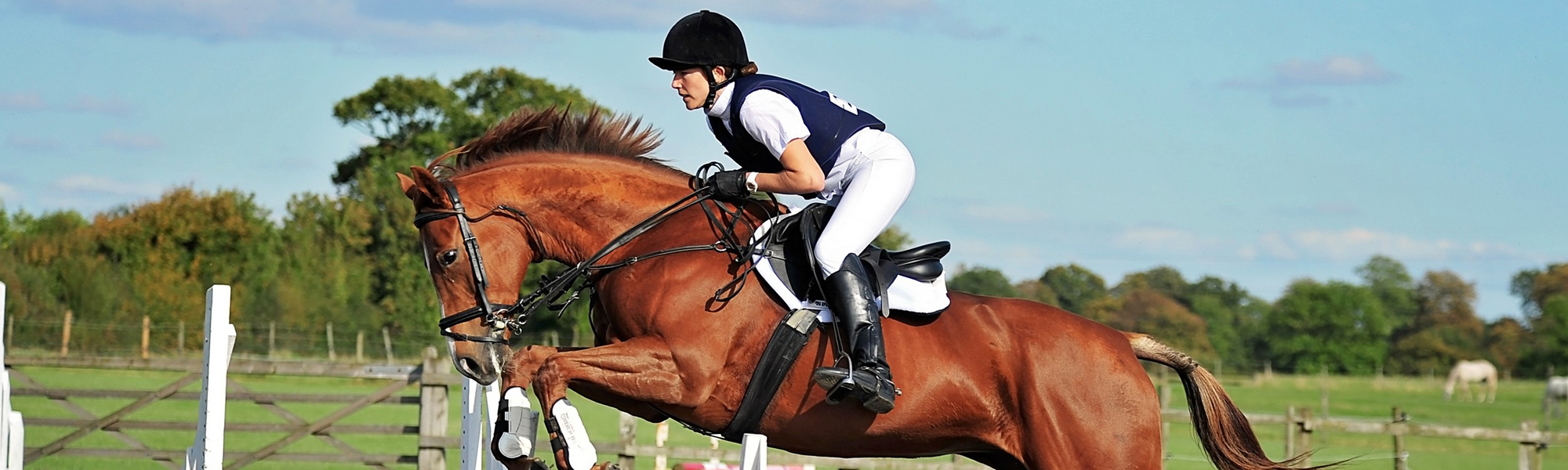 Jumping shows