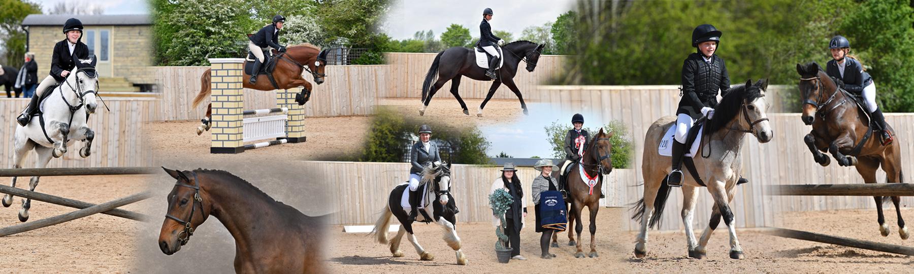 Equestrian Events at Harold's Park